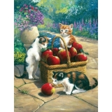 Painting by Numbers™ Junior Small Set, Bumper Crop