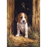 Painting by Numbers™ Junior Small Set, Beagle Puppy